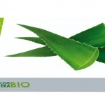 Aloe vera bio horizontal