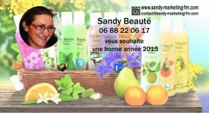 bonne-annee-fm-2015