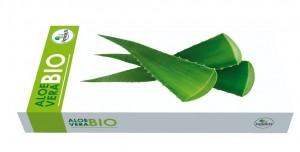 Aloe-vera-bio
